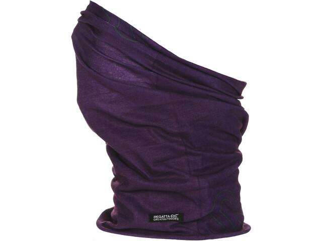 Regatta Multitube II Miehet, purple potion
